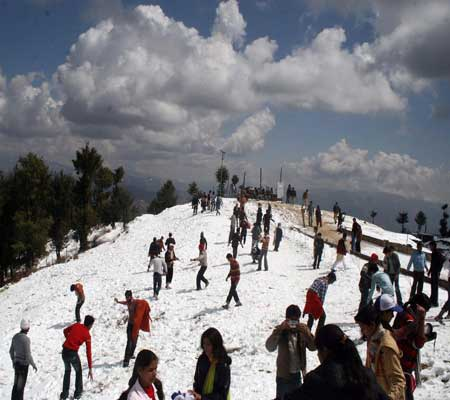 Toshali Royal view Shimla